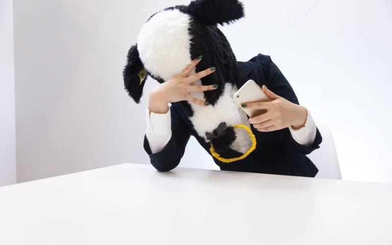 彼女ができない牛