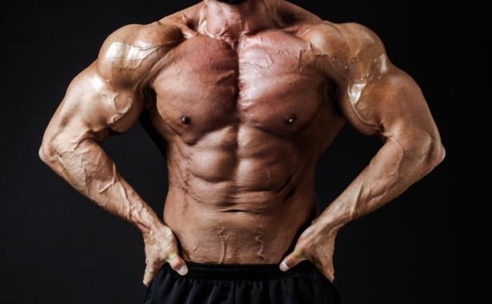 鍛えられた腹筋と肉体